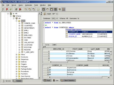 Aqua Data Studio Screenshot