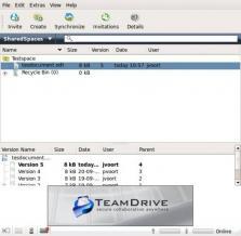 TeamDrive Portable Screenshot