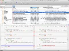 SmartSynchronize Screenshot