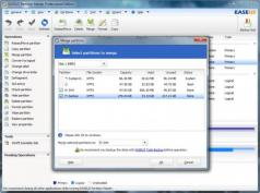 EASEUS Partition Master Professional Screenshot