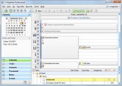 C-Organizer Pro Screenshot