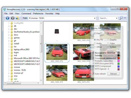 StrongRecovery Screenshot