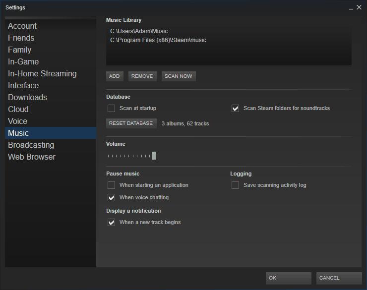 Steam Music Settings